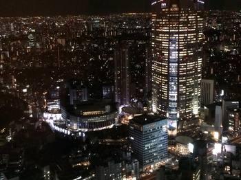 リッツカールトンホテルからの景色.jpg